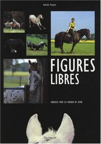 Figures libres : Exercices pour les chevaux de loisir