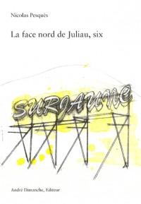 La face nord de Juliau, six : Surjaune, poème installé