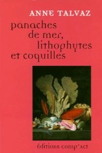 Panaches de Mer, lithophytes & coquilles