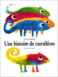 Une histoire de cameleon
