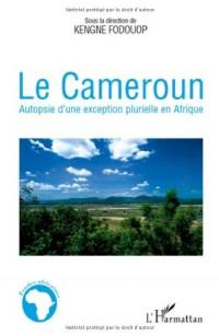 Le Cameroun : Autopsie d'une exception plurielle en Afrique