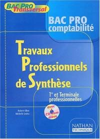 Bac Pro Tranversal : Travaux professionnels de synthèse, Bac pro Comptabilité, 1ère et terminale professionnelles (Manuel, 1 livre + 1 CD-Rom)