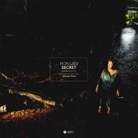 Mon Lieu Secret. des Lyonnais Dans l'Oeil d'Ernesto Timor