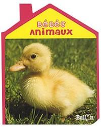 Livre maison : bébés animaux
