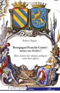 Bourgogne/ Franche-Comté : Les relations ambiguës entre deux régions soeurs et rivales