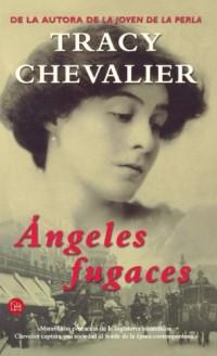 Angeles Fugaces/falling Angels