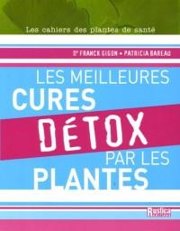 Les meilleures cures détox par les plantes