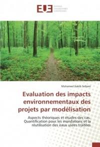 Evaluation des impacts environnementaux des projets par modélisation: Aspects théoriques et études des cas. Quantification pour les inondations et la réutilisation des eaux usées traitées