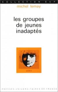 Les Groupes de jeunes inadaptés, 3e édition : Rôle du jeune meneur