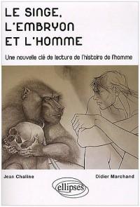 Le singe l'embryon et l'homme une nouvelle clé de lecture de l'histoire de l'homme