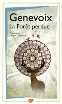 La bibliothèque idéale des 50 ans GF, Tome 19 : La Forêt perdue