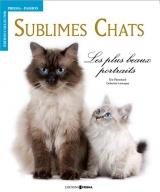 Sublimes chats : Les plus beaux portraits