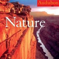 Audubon Nature 2008 Calendar