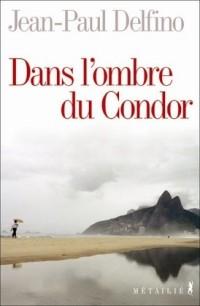 Dans l'ombre du Condor