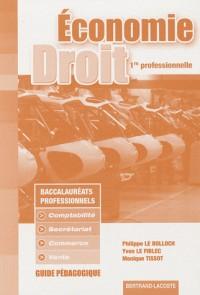 Economie et droit 1e professionnelle : Guide pédagogique