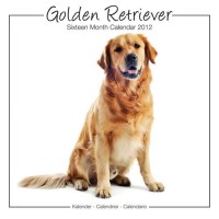 Calandrier 2012 - Golden Retrievers