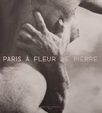 Paris à fleur de pierre
