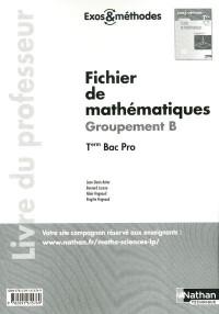 Fichier de Mathematiques Term Bac Pro - Groupementnt B (Exos et Methodes) Professeur 2011