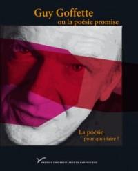 Guy Goffette ou la poésie promise