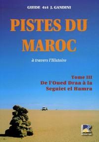 Pistes du Maroc à travers l'histoire : Tome3, Le Sahara, De l'Oued à la Seguiet el Hamra