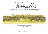 Versailles : Parcours en un lieu magnétique