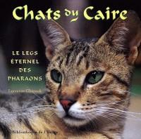 Chats du Caire
