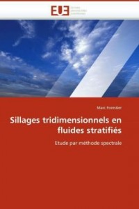 Sillages Tridimensionnels En Fluides Stratifis