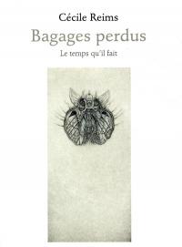 Bagages perdus