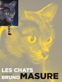 Les chats vus par Bruno Masure