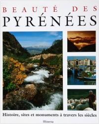 Beauté des Pyrénéens : Son histoire, ses sites, ses monuments, à travers les siècles