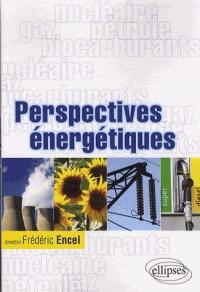 Perspectives énergetiques Gaz Pétrole Nucléaire Biocarburants