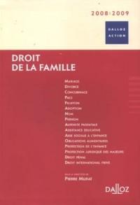Droit de la famille 2008-2009