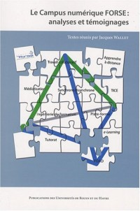 Le Campus numérique FORSE : analyses et témoignages