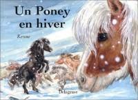 Un poney en hiver
