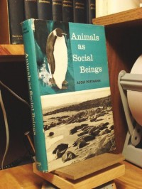 Animals as Social Beings