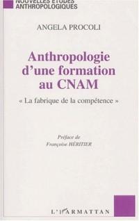 Anthropologie d'une formation au cnam. la fabriquede la competence