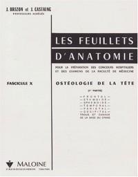 Les Feuillets d'anatomie, fascicule 10 : Ostéologie de la tête, 1ère partie