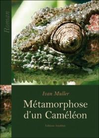 Métamorphose d'un Cameleon
