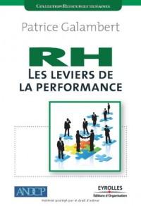 RH les leviers de la performance : Redéfinir, développer et piloter la performance Ressources humaines