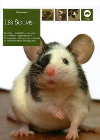 Les souris