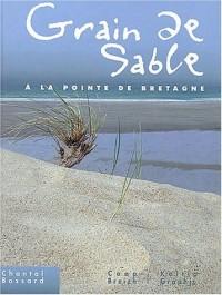 Grain de sable à la pointe de Bretagne