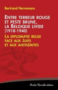 Entre terreur rouge et peste brune, la Belgique livide (1918-1940) : La diplomatie belge face aux Juifs et aux antisémites