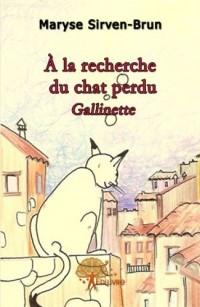 A la recherche du chat perdu Gallinette