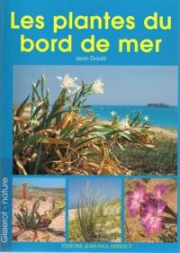 Les plantes du bord du mer