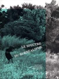 Le spectre du surréalisme : Survivance du surréalisme dans la photographie contemporaine