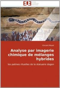 Analyse par imagerie chimique de mélanges hybrides: les patines rituelles de la statuaire dogon