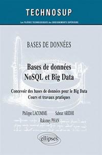 Bases de données NoSQL et Big Data : Concevoir des bases de données pour le Big Data - Cours et travaux pratiques