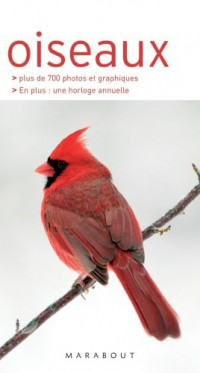 Oiseaux : Les reconnaître facilement sans se tromper