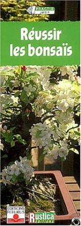 Practis : Les bonsaï