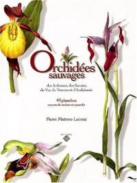 Orchidées sauvages des Ardennes, des Savoies, du Var, du Vercors et d'Andalousie : 44 Planches, crayons de couleur et aquarelles